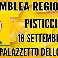 Assemblea Regionale M5S Basilicata, Pisticci 18 Settembre 2016.