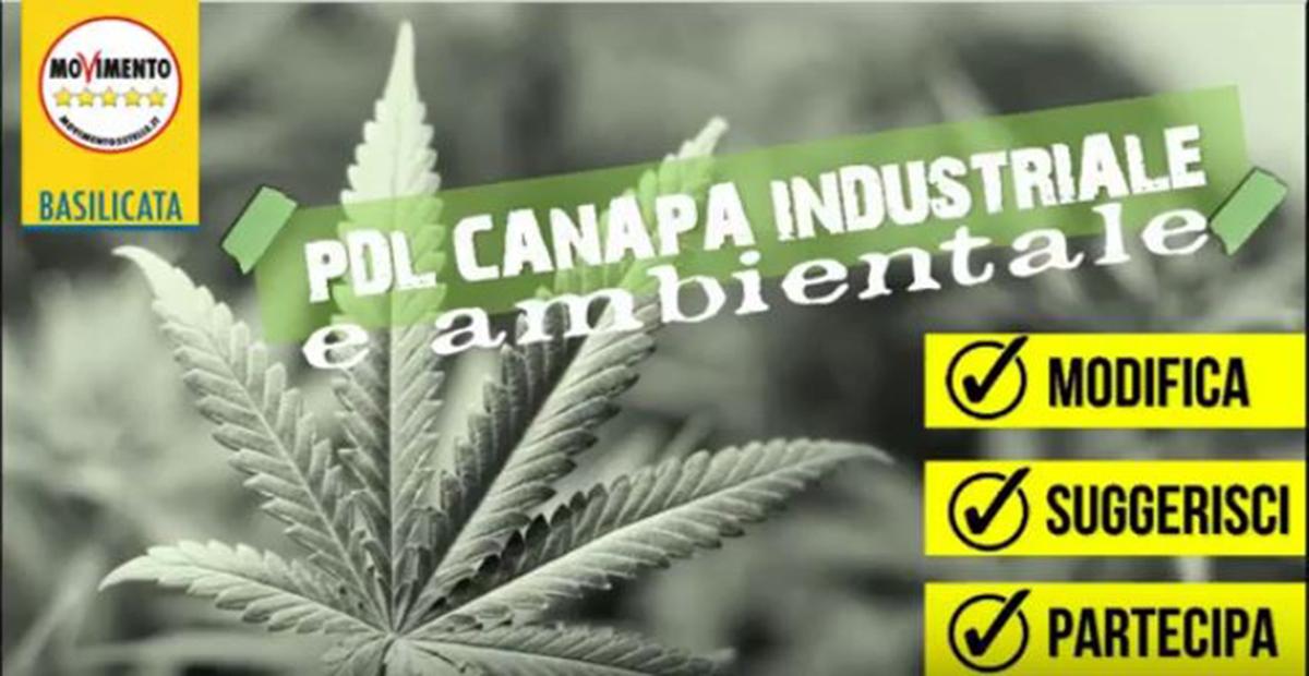 PdL su Canapa per uso industriale e ambientale.